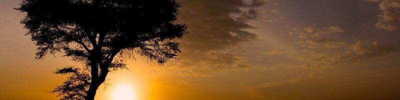 ID church Tanzania: Tanzanian Landscape
